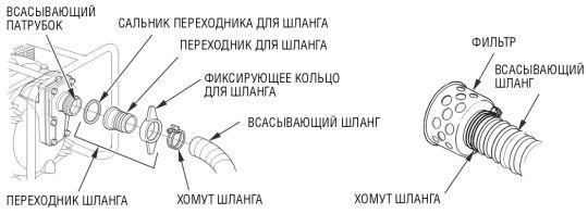net_vsasivania.jpg